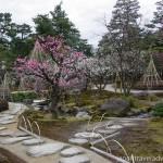 Plum Grove Garden