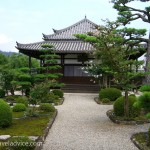 Todaiji Temple Grounds and Gardens