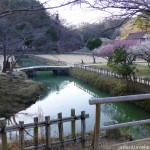 Hanchi with Bridge and Ume Grove