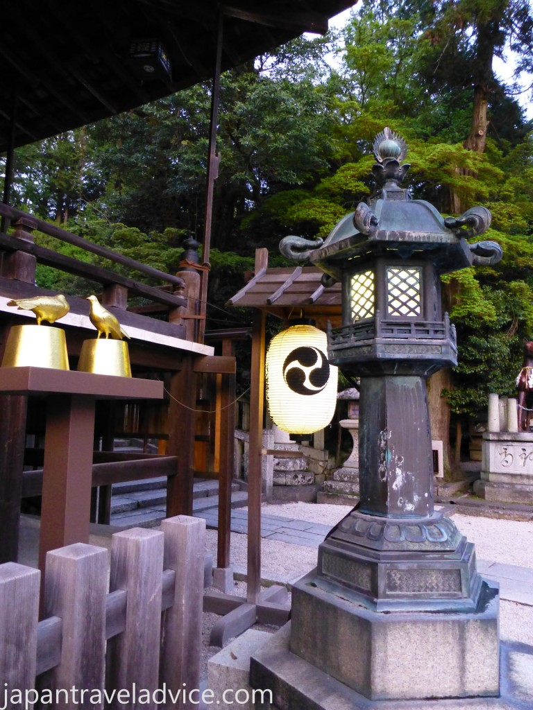Toro at Himure Hachimangu Shrine