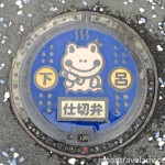 Small Frog Manhole Cover at Gero Onsen