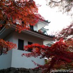 Autumn Leaves at Gujo Hachiman Castle