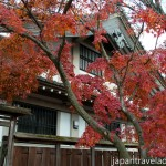 Autumn Colours at Kokeizan Eihoji Temple