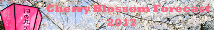 Japan Cherry Blossom Forecast 2017